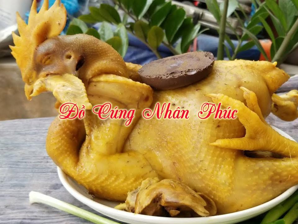gà luộc, gà cúng đẹp